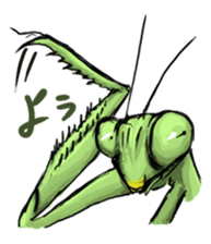 Mantis sticker #763183