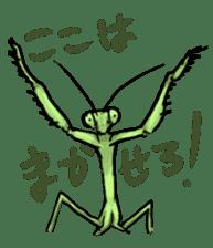 Mantis sticker #763201