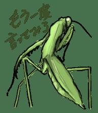 Mantis sticker #763210