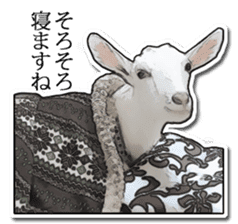 Shiropen the pygmy goat vol.1 sticker #769353
