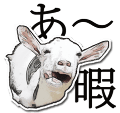 Shiropen the pygmy goat vol.1 sticker #769357