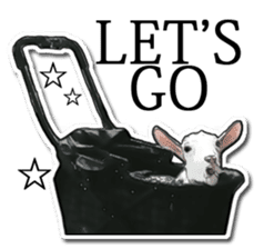Shiropen the pygmy goat vol.1 sticker #769359