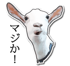 Shiropen the pygmy goat vol.1 sticker #769364