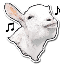 Shiropen the pygmy goat vol.1 sticker #769368