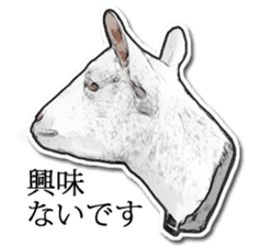 Shiropen the pygmy goat vol.1 sticker #769371