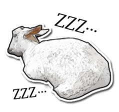 Shiropen the pygmy goat vol.1 sticker #769372