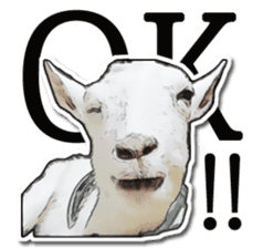 Shiropen the pygmy goat vol.1 sticker #769375