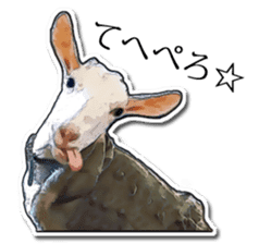 Shiropen the pygmy goat vol.1 sticker #769382