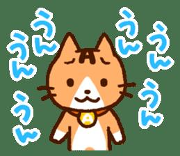 Blood type cat sticker sticker #770215