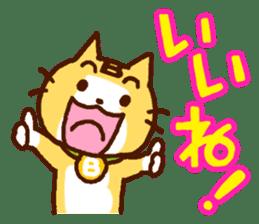 Blood type cat sticker sticker #770220