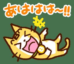 Blood type cat sticker sticker #770228