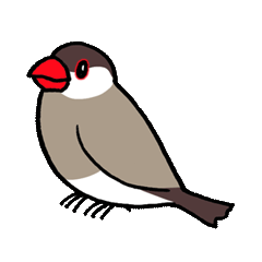 """Daily Java sparrow"" With bird 02"
