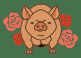 Pig farm sticker #780370