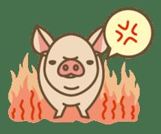 Pig farm sticker #780371