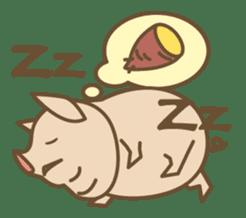 Pig farm sticker #780378