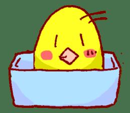PiyoPiyoPiyo sticker #794657