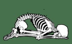 just bones sticker #795860