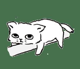 Cat,Cat,Cat!! sticker #796419