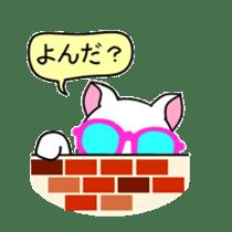 sunglasses cat shirosan sticker #814233