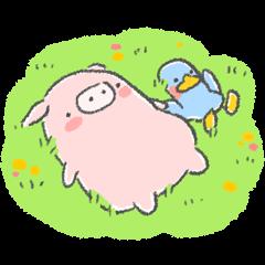 Pinko & Luli 2