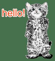 Just cats! sticker #835800