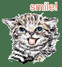 Just cats! sticker #835801