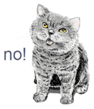 Just cats! sticker #835810