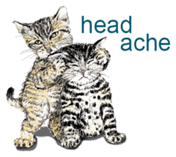 Just cats! sticker #835821