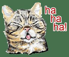 Just cats! sticker #835828