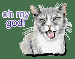 Just cats! sticker #835834