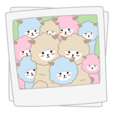 Alpaca The Series sticker #836697