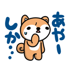Dialect of Akita and Akita dog Roy 2 sticker #837922