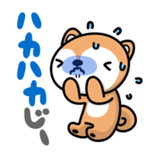 Dialect of Akita and Akita dog Roy 2 sticker #837951