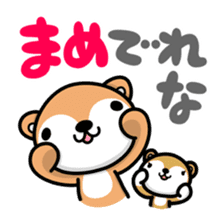Dialect of Akita and Akita dog Roy 2 sticker #837957