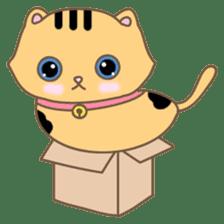 Cats in Box sticker #844721
