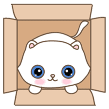 Cats in Box sticker #844727