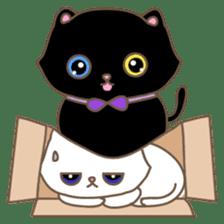 Cats in Box sticker #844731