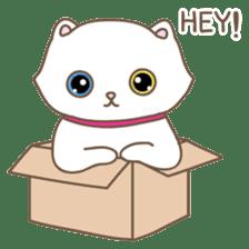 Cats in Box sticker #844743