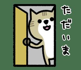 Friendly Cat sticker #845625