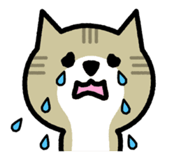 Friendly Cat sticker #845630