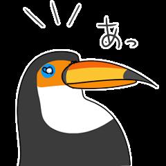 bird is kawaii