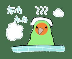 bird is kawaii sticker #848452