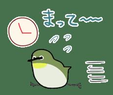 bird is kawaii sticker #848466