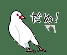 bird is kawaii sticker #848473