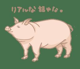 Plump pig stickers sticker #853318