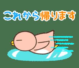 Penguin family sticker #854659