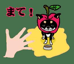 sweet&spicy2 sticker #856721