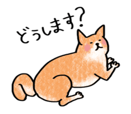 A dog and cat sticker #861903