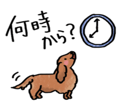 A dog and cat sticker #861905