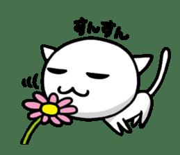white kitten sticker #868777